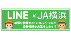メルカート・「ハマッ子」直売所 新LINEアカウントのお知らせ